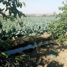 Seth Bagh Noorden Garden karachi