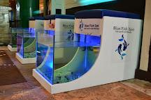 Blue Fish Spa, Cancun, Mexico