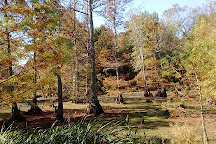WC Johnson Park, Collierville, United States