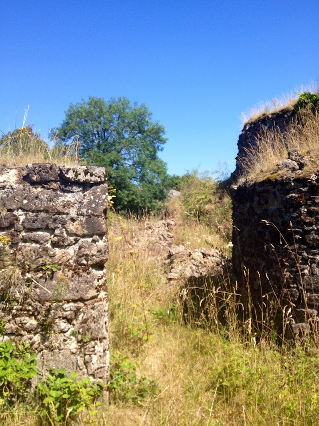 Château de Monismes