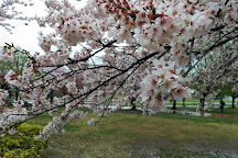 Kashiwafurusato Park, Kashiwa, Japan