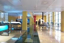 Caesaraugusta Theater Museum, Zaragoza, Spain