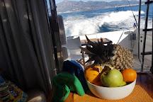 LOVIT Charter, Puerto Banus, Spain