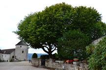Chateau de Belvoir, Belvoir, France