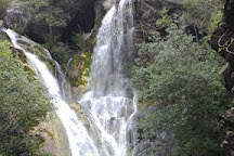 Salmon Creek Falls Trail, Big Sur, United States