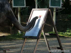 Photo: Elephant painting