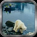 Alaska Live Wallpaper icon