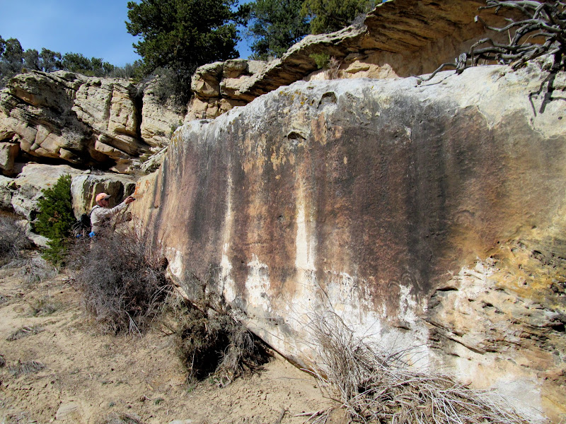 Photo: Faded and weathered petroglyph panel