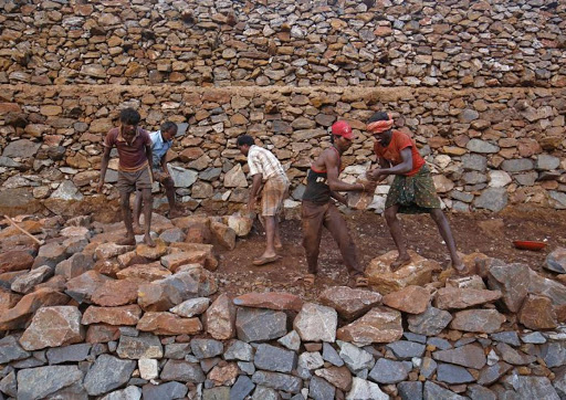 Global award for project that secured land for India's tribal people