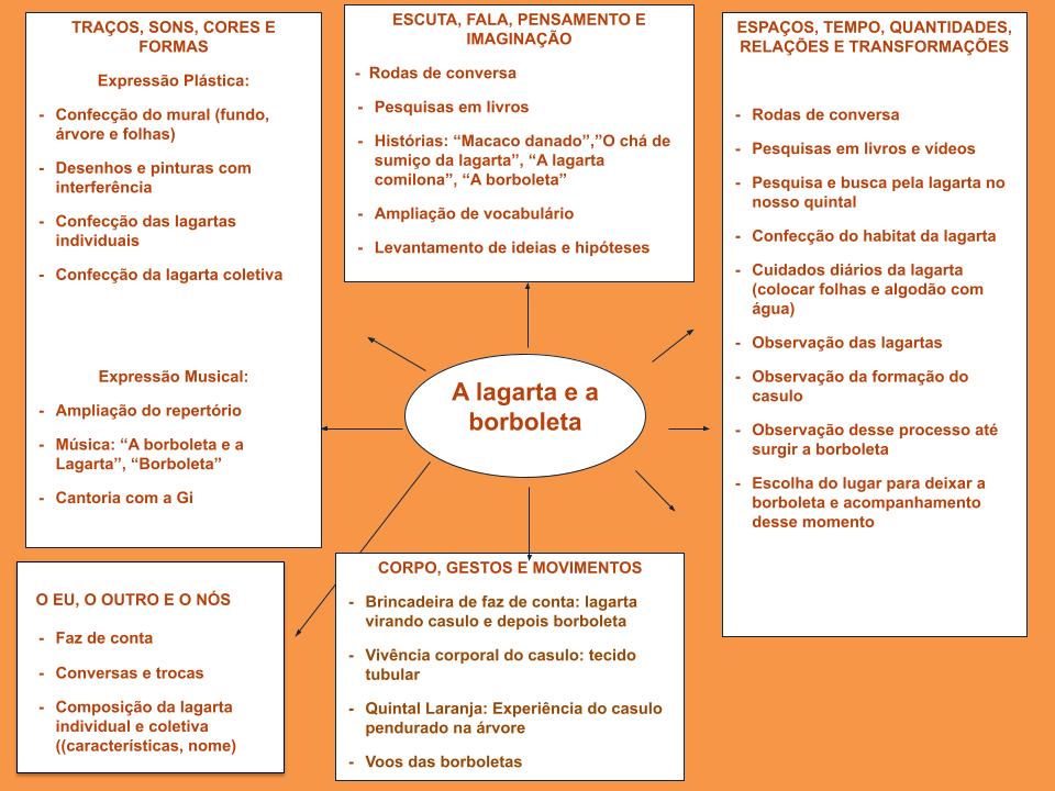 A imagem mostra infográfico sobre a experiência da lagarta e a borboleta desenvolvida com a turma do Laranja na Escola Viva.