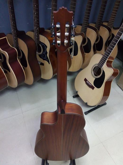 Classic guitar DC250J