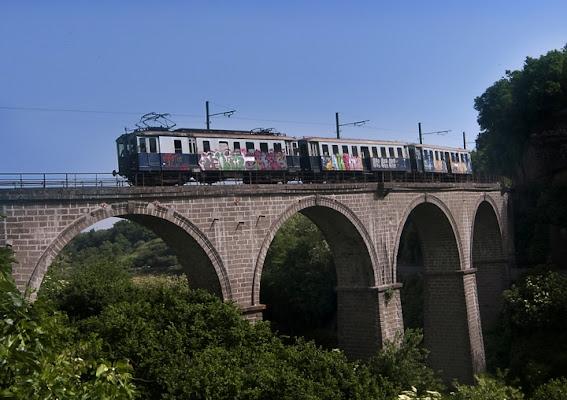 Il treno di bagnaia di Mirko Macari Fotografia