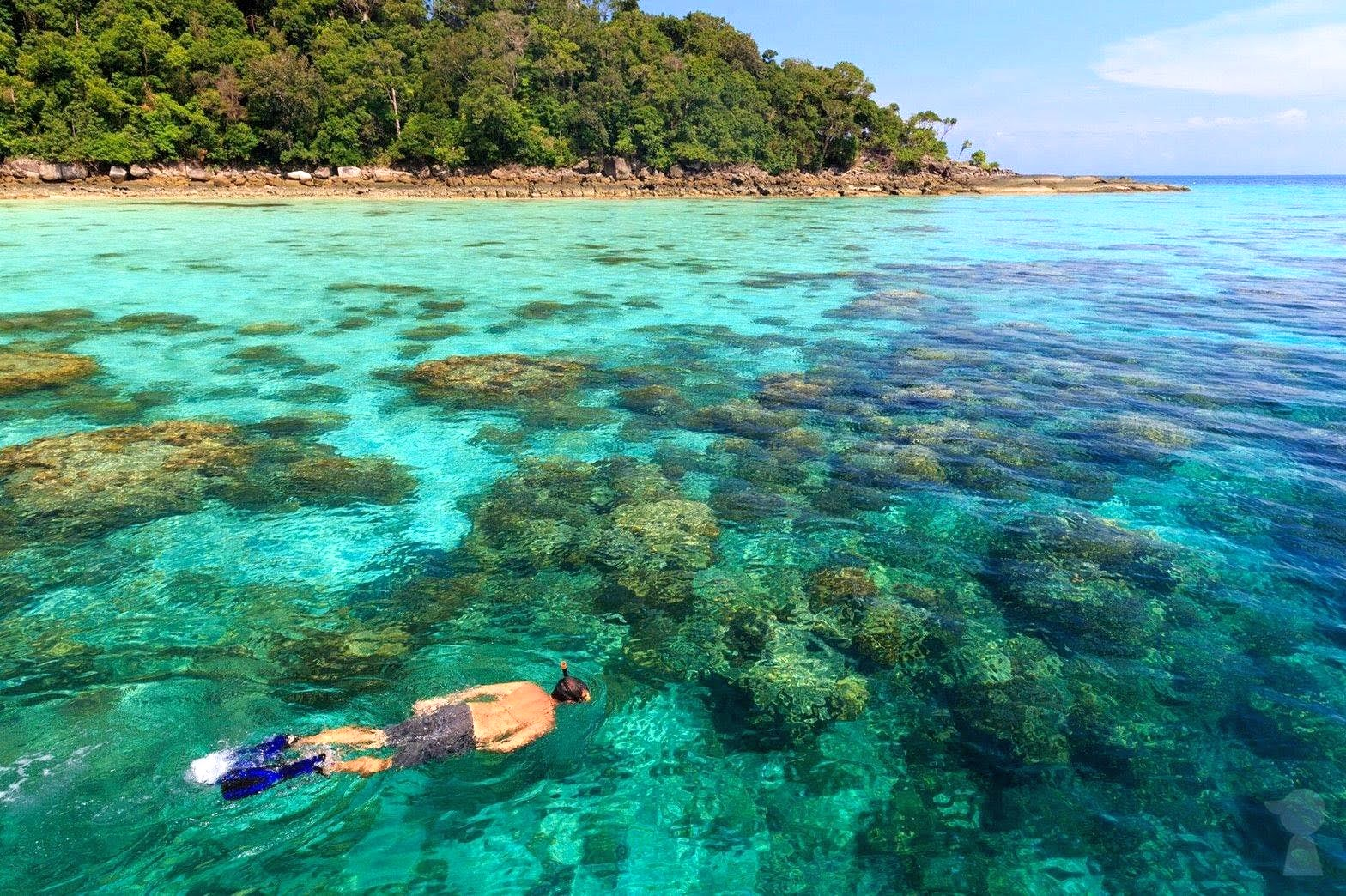Snorkel Tour to Surin Islands by Fantastic Similan from Khao Lak
