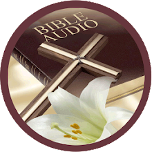 Bible Audio Download on Windows