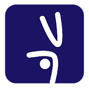The Handstand Plan 1.0 Icon
