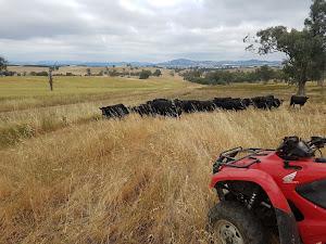 Subscription Farming