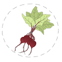 Stonesoup 6-Ingredient Dinners icon
