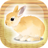 jp.co.mozukuapp.rabbit