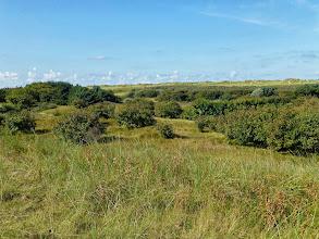 Photo: die Dünen, durch die wir gerne laufen