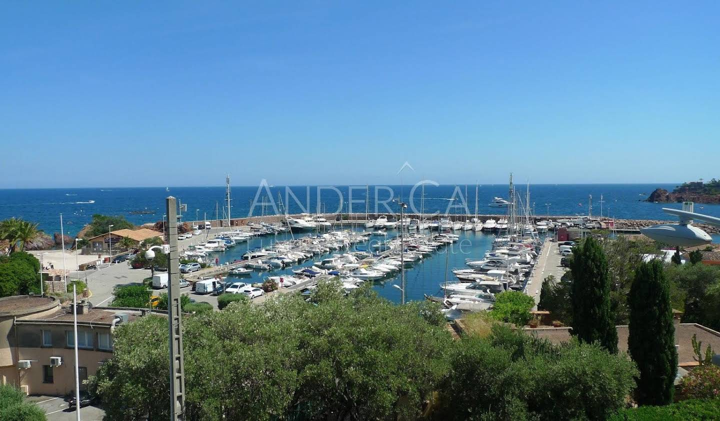 Apartment with terrace and pool Theoule-sur-mer