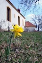 Photo: Vesnický kostelík v Žežicích a první posel jara.
