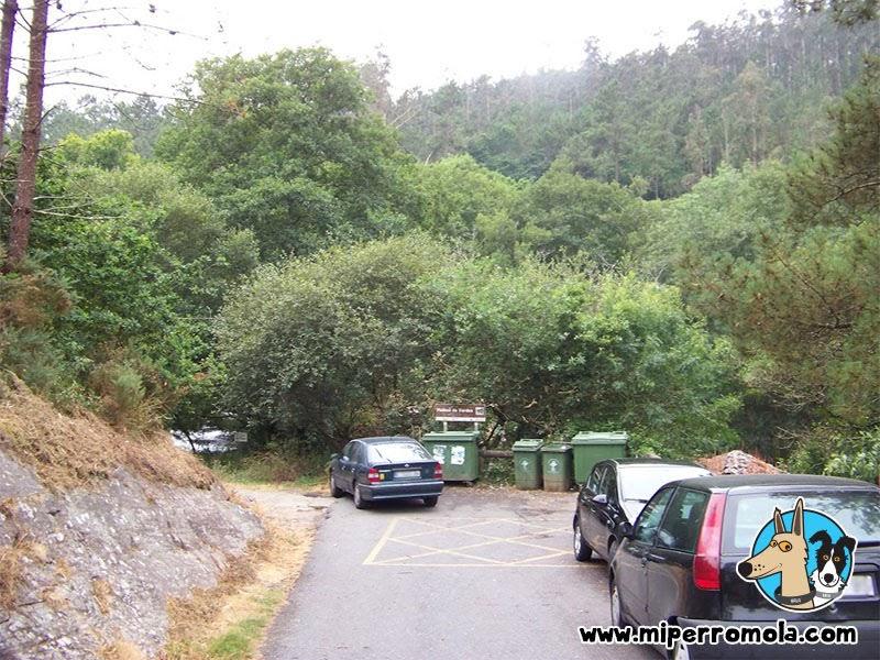 Senderismo con Perro Refugio de Verdes, A Coruña con un Can de Palleiro y un Border Collie