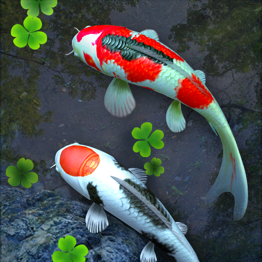 Wallpaper Ikan Koi