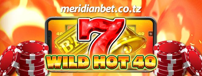 C:\Users\user\Downloads\Wild-Hot-40_PR.png