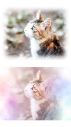 わたあめカメラ - わたあめ風ほわほわ写真加工アプリのおすすめ画像2