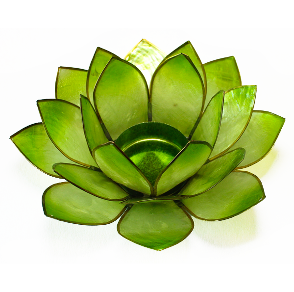 Ljuslykta, ljusgrön lotusblomma