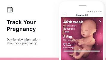 screenshot of Stork — Pregnancy Tracker & Calendar App