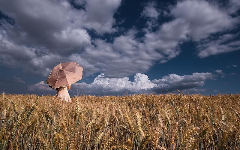 Arriva il temporale? di Dariagufo