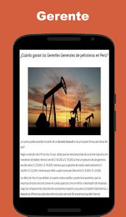Funciones y Responsabilidades del Gerente General - náhled