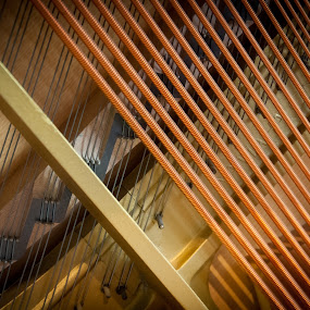 piano strings by Johannes Schaffert - Abstract Patterns ( upright, music, abstract, piano, string, strings, instrument )