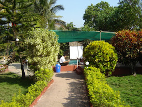 Photo: Garden View