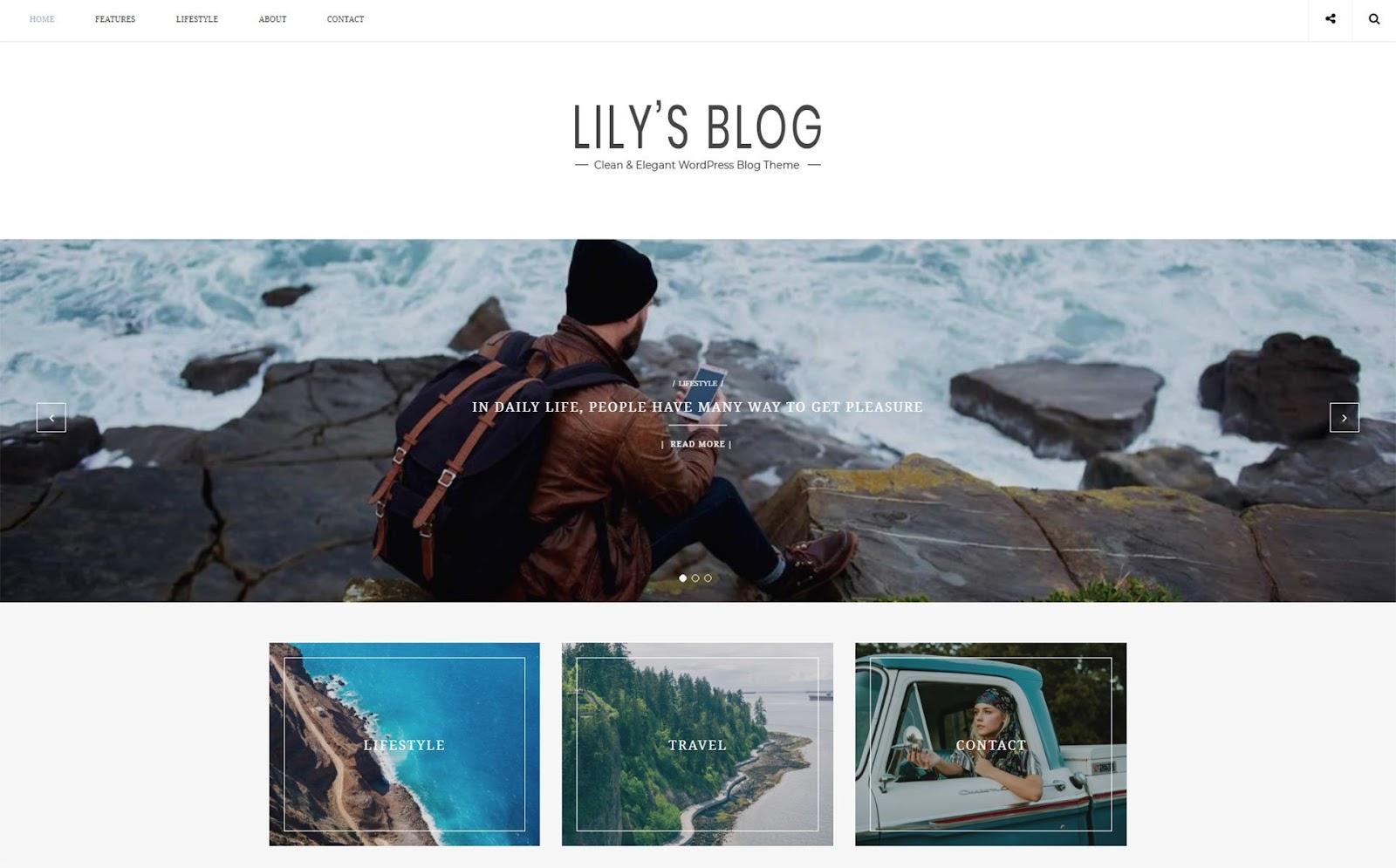 Fastest WordPress themes - Lily