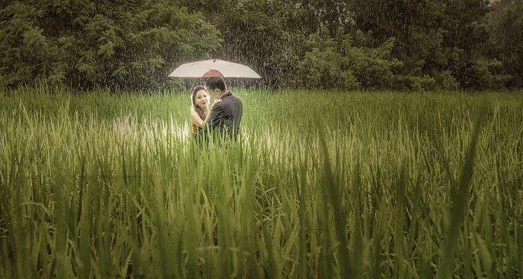 Wedding photographer Cedric Yang (cyang). Photo of 23.12.2014