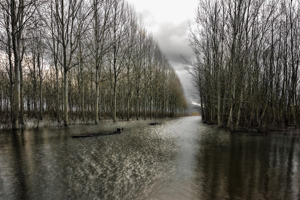 La grande pioggia di Luca160