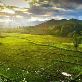 divine light by Arubam Meitei - Landscapes Cloud Formations ( ray, nature, greenery, weather, landscape )