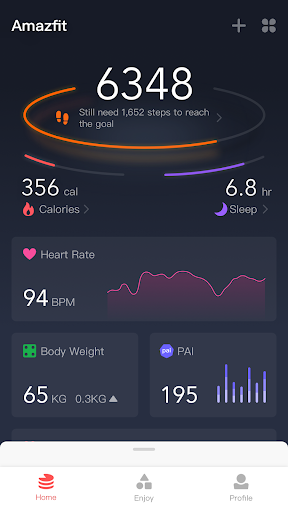Amazfit screenshot
