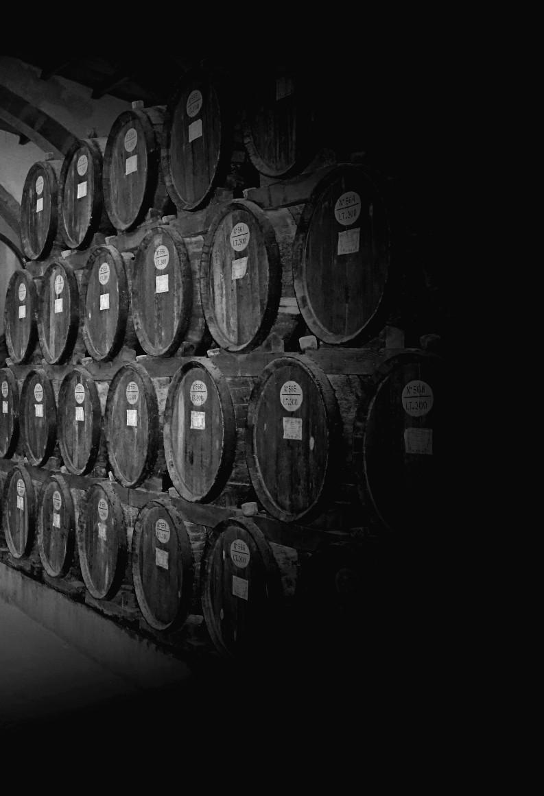 In vino veritas di Kamone