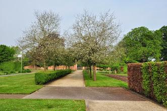 Photo: Fruitbomen in oranjerietuin Vordenstein
