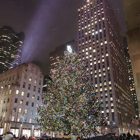 Christmas in New York by Di Mc - Public Holidays Christmas ( lights, winter, cold, snow, christmas, decorations, new york,  )