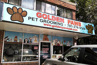 Photo: Golden Paws Pet Grooming Lexington, Ma proudly displaying their BBB Accreditation