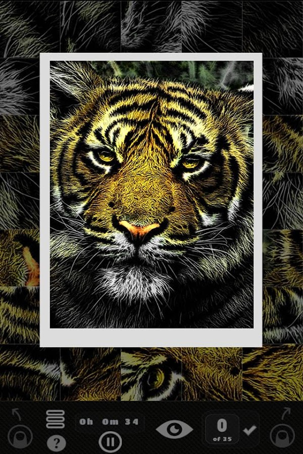 Picture Puzzler - Animals- screenshot