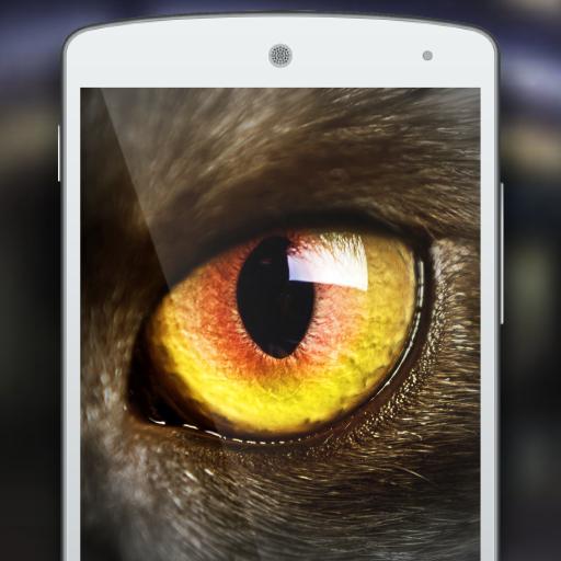 Meow: Cat Eyes Vision Joke (game)