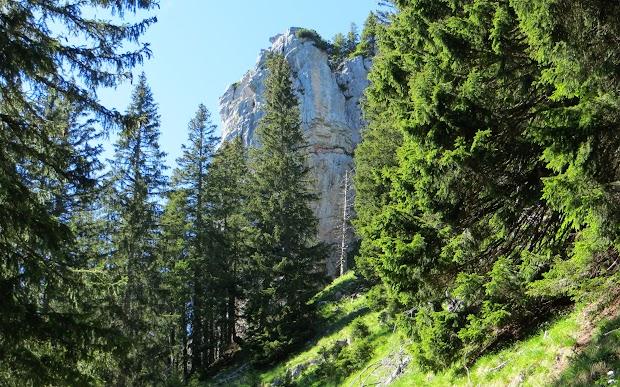 Blick zum Besler Obermaiselstein Allgäu