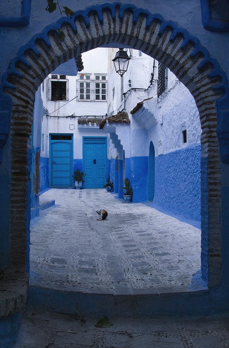 Chef - La città blu di edidf