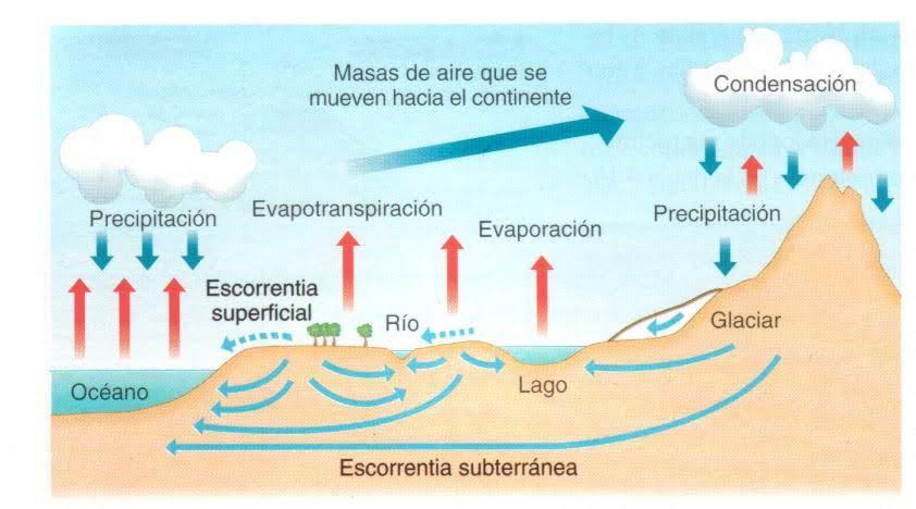 En este dibujo se puede ver las diferentes fases del ciclo hidrológico