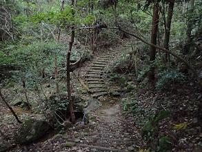 小川を渡り階段の登りに